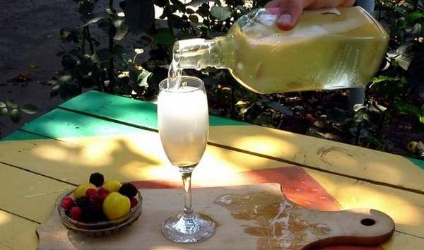 Как из усов винограда сделать шампанское. как приготовить домашнее шампанское из виноградных листьев