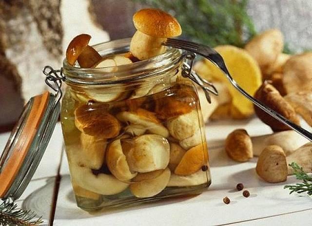 Как вкусно солить белые грибы — проверенные методы