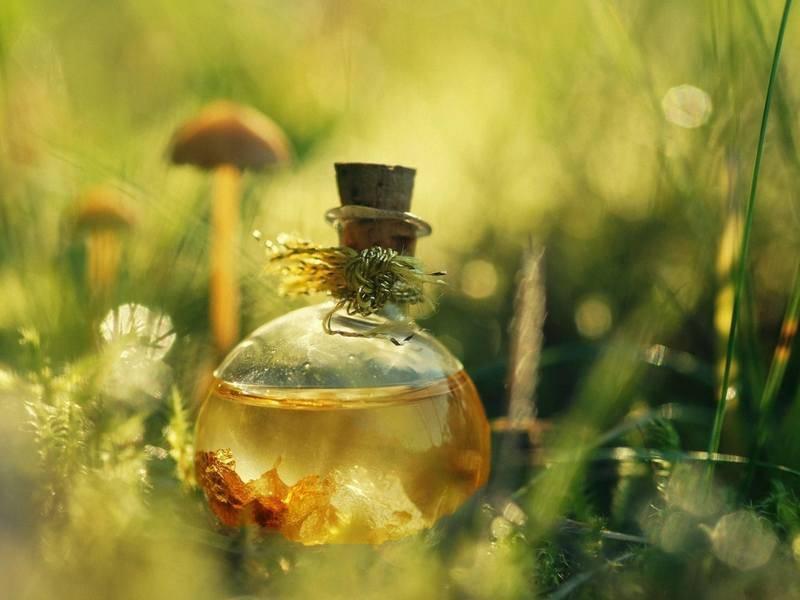 Масло эфирное можжевельник лечебные свойства и противопоказания. можжевеловое масло — польза и секреты применения