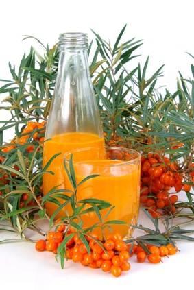 Рецепты приготовления облепихового сока на зиму