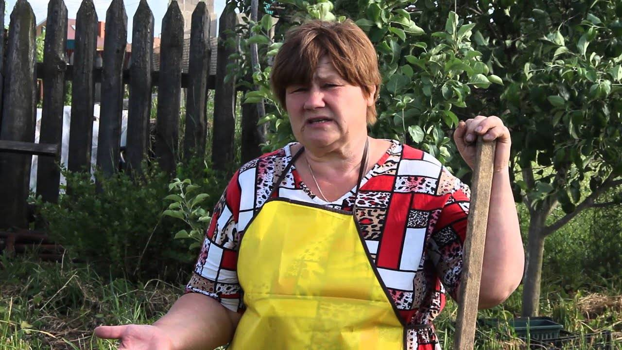 Проверенные методы как бороться с сорняками на огороде