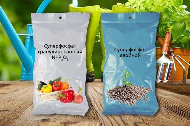 Удобрение суперфосфат – особенности применения
