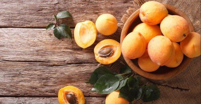 Чем отличается жердела от абрикоса?