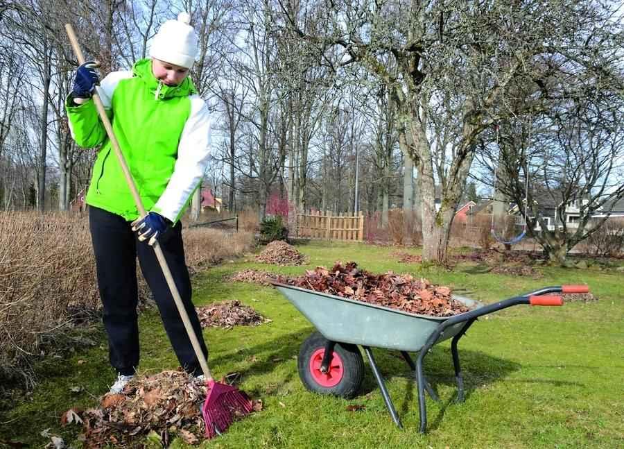 30 дел, которые надо сделать в саду, огороде и цветнике в апреле