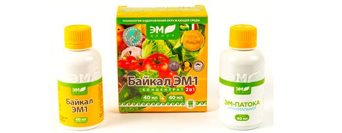 Байкал эффективный современный эм-препарат для быстрого приготовления компоста