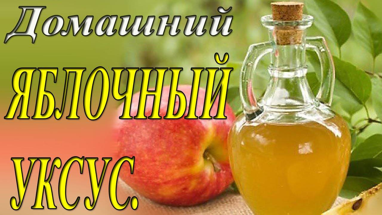 Как приготовить домашний яблочный уксус – 3 простых рецепта