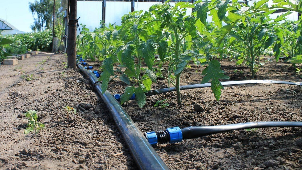 Инструменты для сада и огорода своими руками: 7 простых идей