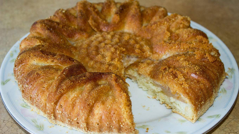 Шарлотка с яблоками в духовке. 13 быстрых и вкусных рецептов пышной шарлотки
