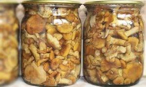 Правила заморозки готовых блюд и полуфабрикатов