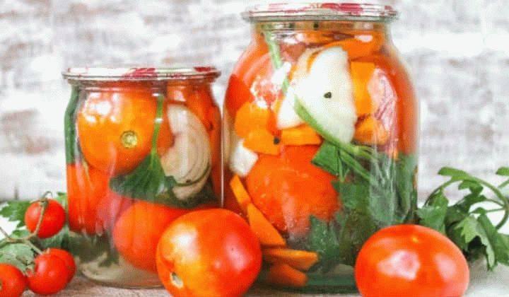 Соленые зеленые помидоры на зиму