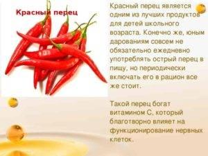 Красный, острый и жгучий перец чили, какая польза от него для мужчин и женщин, чай с перцем и вред для организма человека.