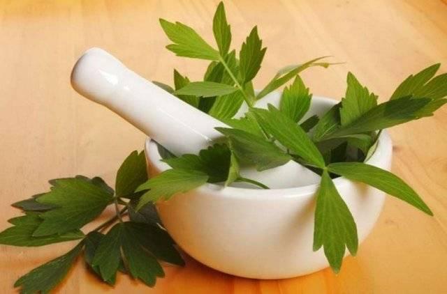 Полезные свойства и противопоказания ягод асаи, их применение для похудения и в косметологии