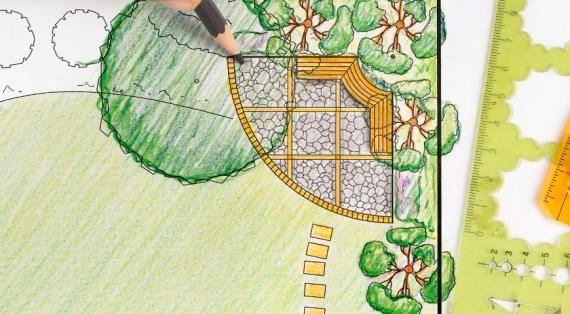 Совместимость плодовых деревьев и кустарников при посадке