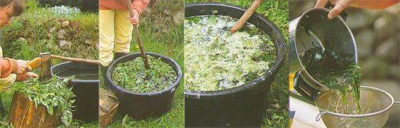 Как правильно использовать дрожжи для подкормки и защиты растений
