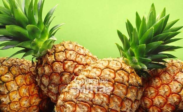 А вы хотите знать где растет ананас в природных условиях?