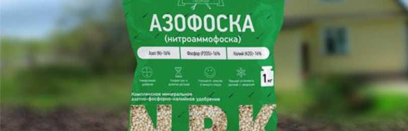Правильное применение удобрения азофоска