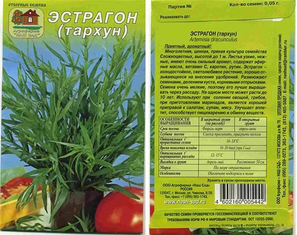 Особенности вегетативного размножения тархуна: черенками, отводками и делением куста