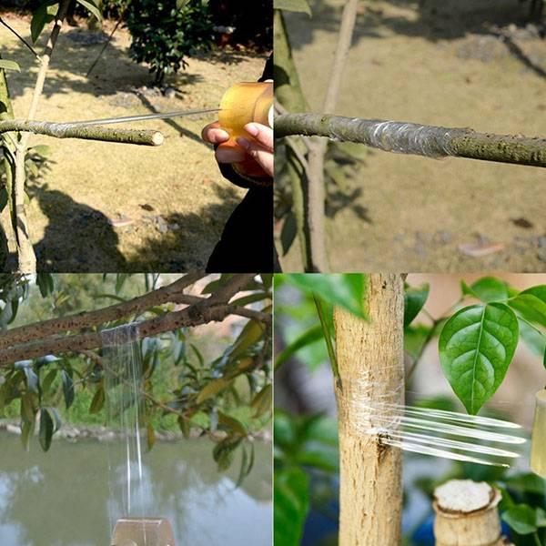 Прививочный секатор – нужная вещь или «блажь» садовода? как сделать правильный выбор?