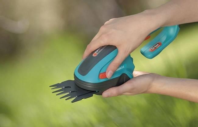 Аккумуляторный опрыскиватель — для полезной прогулки по саду