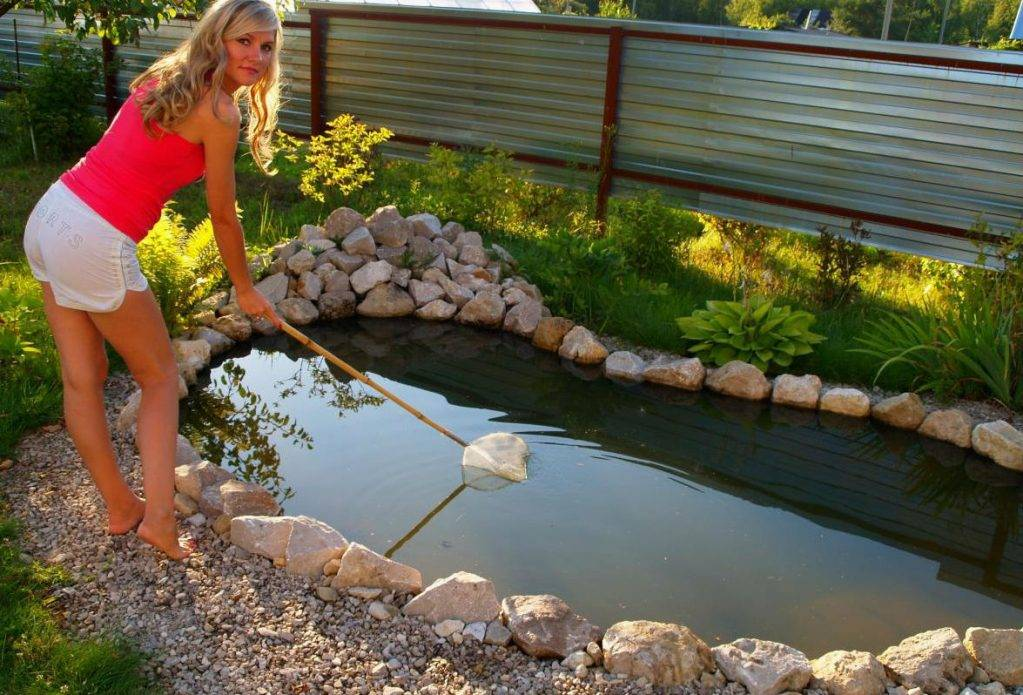 Как и зачем проводится известкование пруда с рыбой