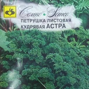 Неприхотливая и полезная корневая петрушка: сорта, выращивание, уход, сбор урожая и многое другое
