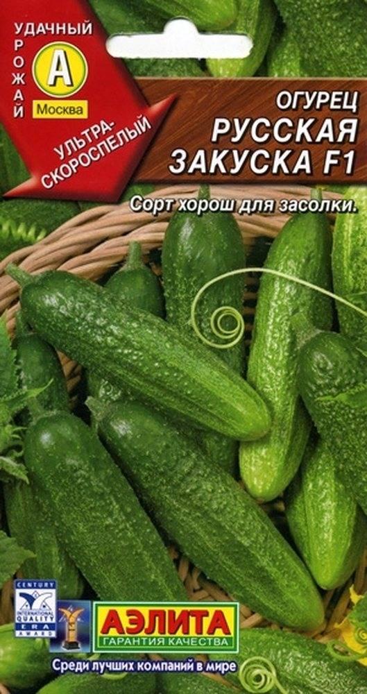 Сорт огурцов кураж: популярный партенокарпик