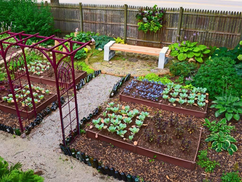 10 типов урожайных грядок: что выращивать и как сделать?