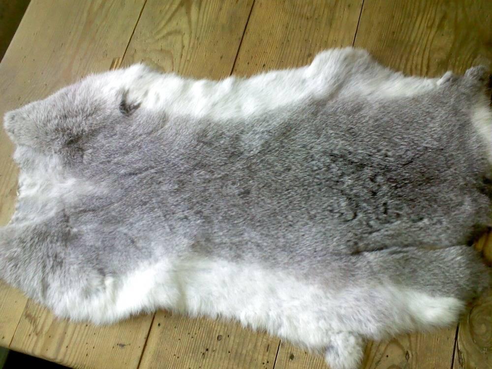 Выделка шкур лисы в домашних условиях