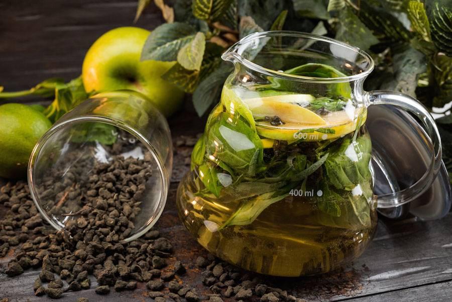 Растение эстрагон (тархун). полезные свойства, область применения травы, химический состав и калорийность