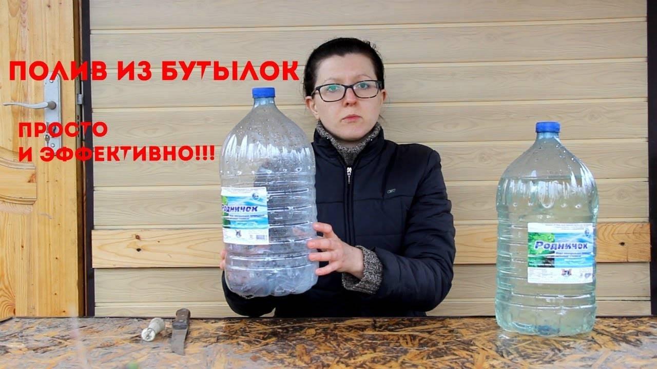 Капельный полив из бутылок своими руками