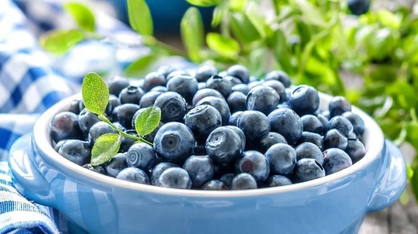 Солнечная ягода санберри полезные свойства рецепты. полезные свойства ягод санберри. самбери ягода – полезные свойства
