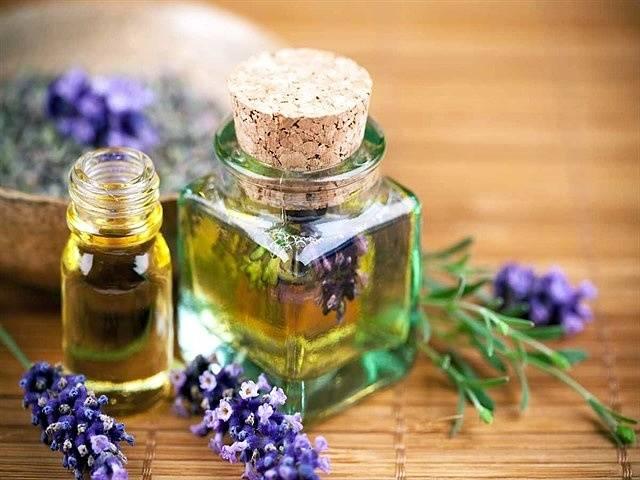 Иссоп лекарственный: применение травы, полезные свойства, противопоказания, что это такое