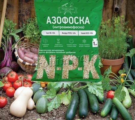 Фертика удобрение инструкция по применению для картофеля. выбираем удобрение для картофеля при посадке — виды и советы по применению. как применять удобрение «кемира» для картофеля