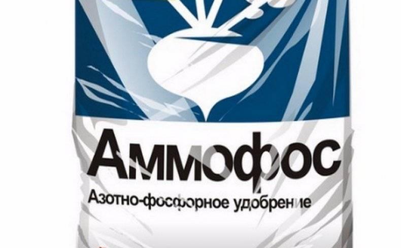 Удобрение аммофос: эффективное комплексное удобрение