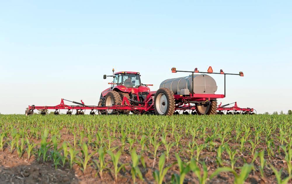Выращивание редиса в защищенном грунте — секреты получения высокого урожая