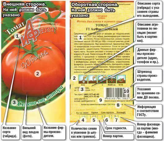 Посадка рассады для теплицы и уход за томатами