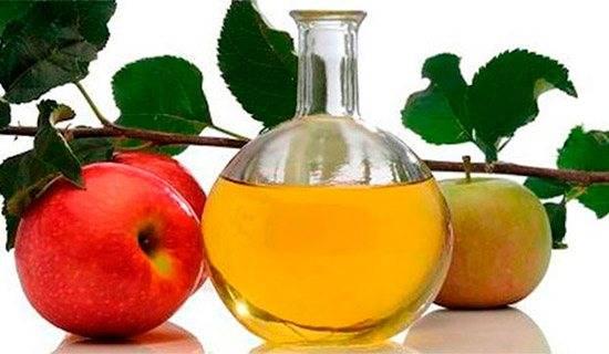 Похудение с помощью яблочного уксуса