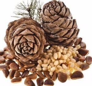 Польза кедровых орехов для здоровья — чем ценны вкусные семена