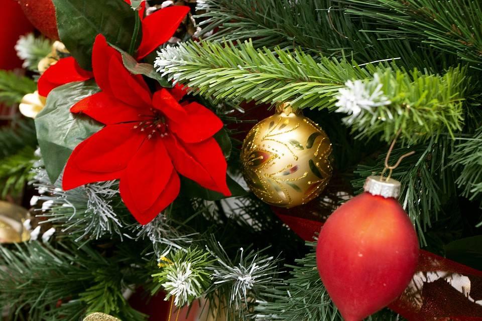 Как делают стеклянные шары со снегом. новогодний сувенир – снег в банке своими руками. приступаем к работе