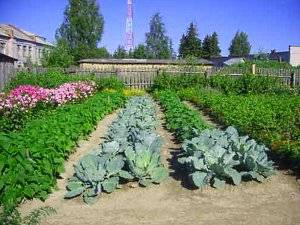 Русский огород