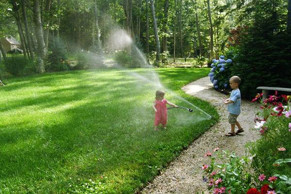 Парниковые условия: как установить автоматическую систему полива в теплице своими руками