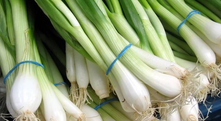 Как вырастить зелёный лук в домашних условиях