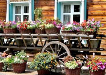 Как обустроить участок в русском стиле: лучшие идеи по созданию красивого и уютного участка (145 фото и видео)