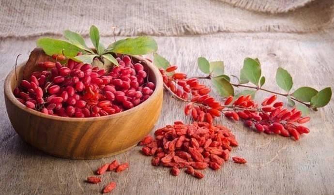 Заготовки на зиму из барбариса: подробные рецепты и фото