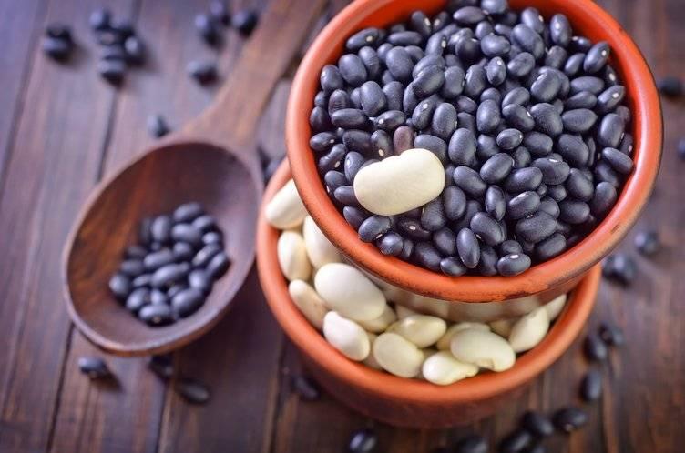Заготовка семян черных бобов