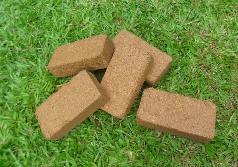 Кокосовый субстрат для рассады. приготовление и использование