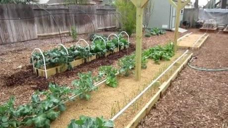 Курдюмов николай - умный огород в деталях. н.курдюмов - умный сад и хитрый огород (н