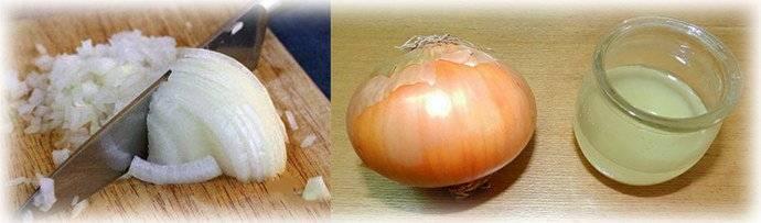 Польза луковой шелухи для организма. рецепты, применение для печени, от простатита, давления, судорог, диабета, при цистите