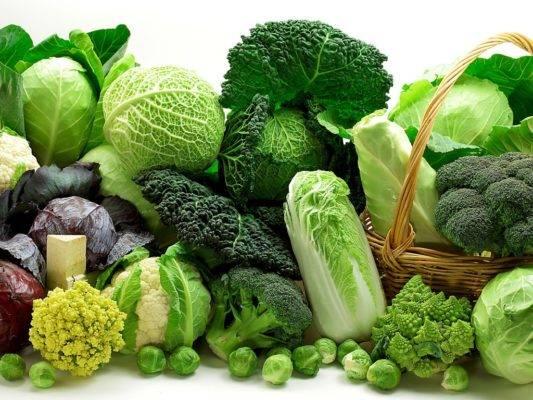 Лучшие сорта капусты брокколи: описание с фото для разных регионов и сроков созревания