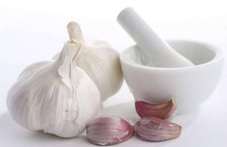 Сок сельдерея: как правильно пить, рецепты приготовления, полезные свойства и противопоказания